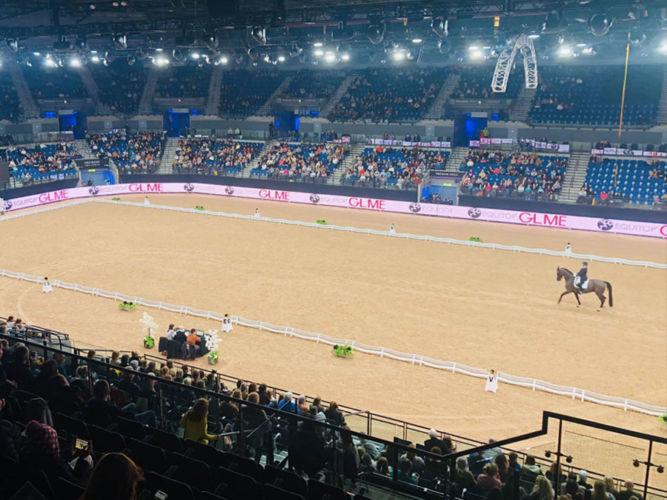 Liverpool International Horse Show '19